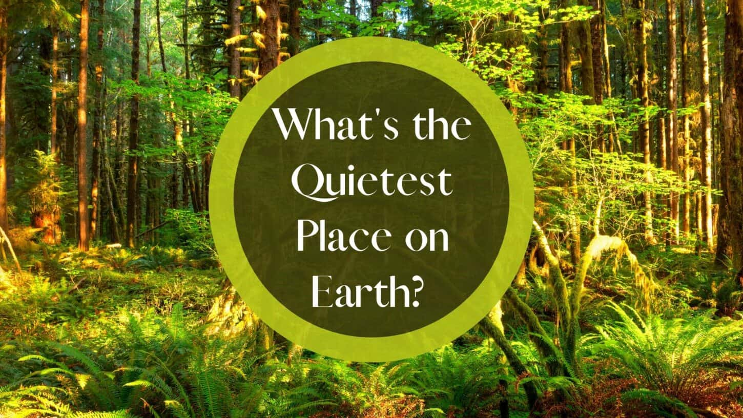 What's the Quietest Place on Earth